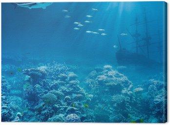 Obraz na Płótnie Morza lub oceanu, pod wodą z rekinem i skarby statek zatonął