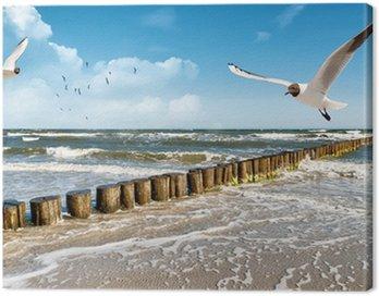Obraz na Płótnie Morze Bałtyckie