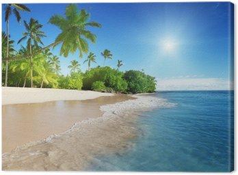 Obraz na Płótnie Morze Karaibskie i palmy