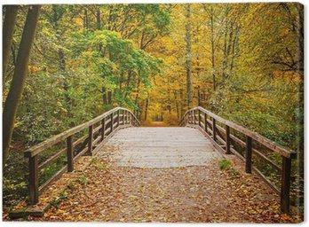 Obraz na Płótnie Most w lesie jesienią
