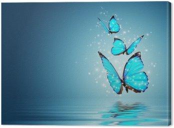 Obraz na Płótnie Motyl
