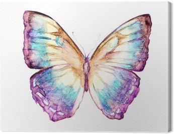 Obraz na Płótnie Motyle projekt