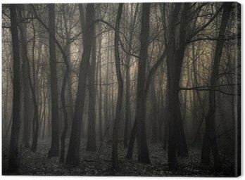 Obraz na Płótnie Mroczny las