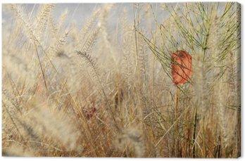 Obraz na Płótnie Natura tło roślin