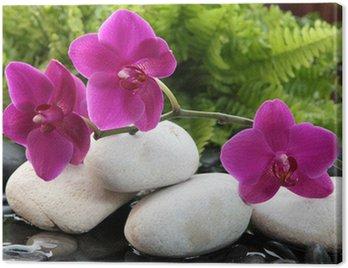 Obraz na Płótnie Niektóre kwiaty