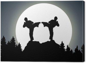 Obraz na Płótnie Night Combat - księżyc