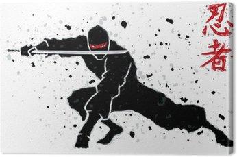 Obraz na Płótnie Ninja