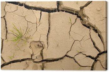 Obraz na Płótnie Nowa nadzieja - globalne ocieplenie