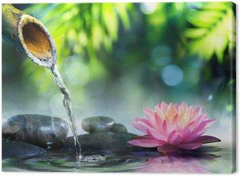 Obraz na Płótnie Ogród zen z czarnych kamieni i różowym lilii wodnej