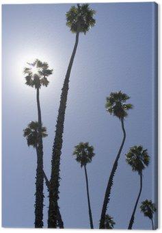 Obraz na Płótnie Osiągając na słońce