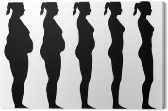 Obraz na Płótnie Otyłe do Skinny Kobieta Silhouette Widok z boku