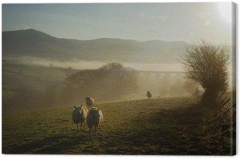 Obraz na Płótnie Owce we mgle