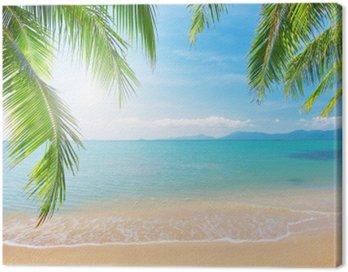 Obraz na Płótnie Palmy i tropikalna plaża