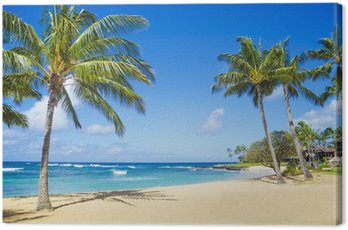 Palmy na piaszczystej plaży na Hawajach