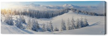 Obraz na Płótnie Panorama gór zimowych