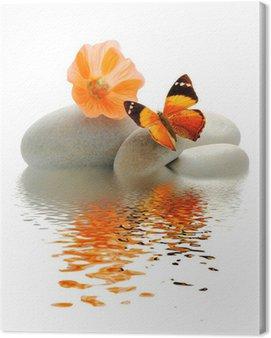 Obraz na Płótnie Papillon szalony