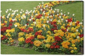 Obraz na Płótnie Parterre de fleurs