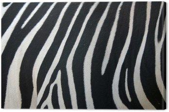 Obraz na Płótnie Paski zebry