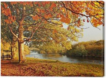 Obraz na Płótnie Piękna jesień w parku