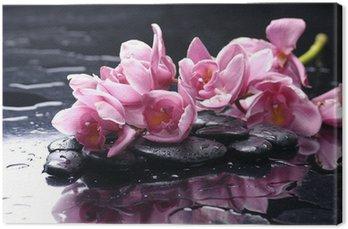 Obraz na Płótnie Piękna orchidea i kamienie z kropli wody