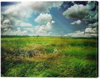 Obraz na Płótnie Piękna przyroda krajobrazu wiejskiego
