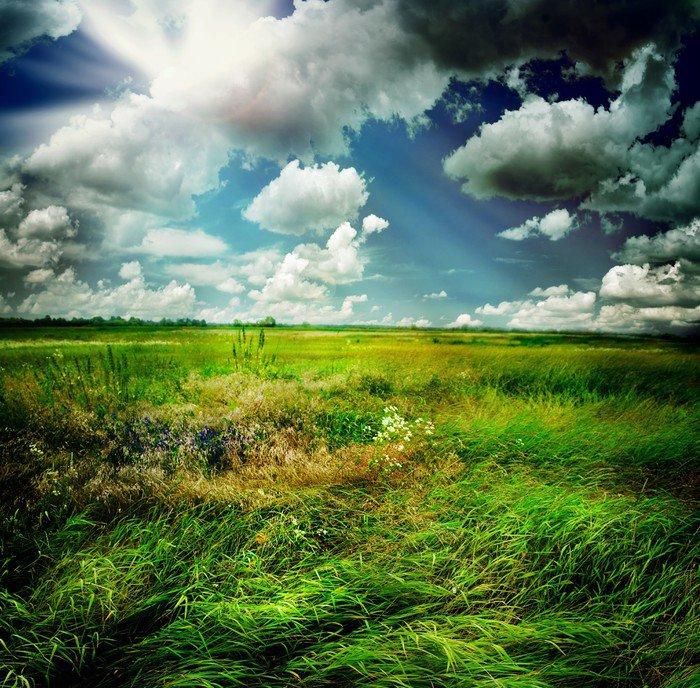 Obraz na Płótnie Piękna przyroda krajobrazu wiejskiego - Tematy