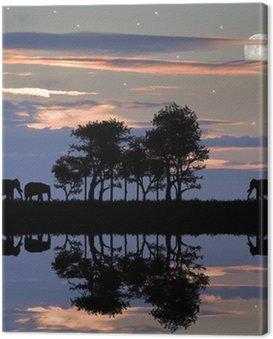 Obraz na Płótnie Piękna sylwetka z Afryki oszałamiającym stylu słońca niebo