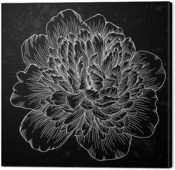 Obraz na Płótnie Piękne czarno-białe piwonia kwiat samodzielnie na tle. Ręcznie rysowane linie konturowe i udarów.