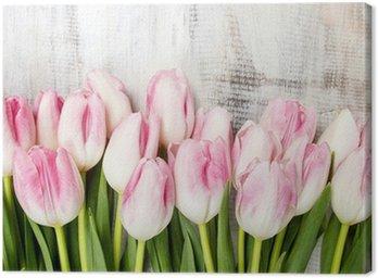 Obraz na Płótnie Piękne różowe i białe tulipany na tle drewnianych. Kopiowanie miejsca