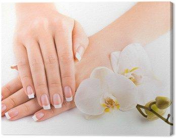 Obraz na Płótnie Piękny francuski manicure z białego orchidea na białym