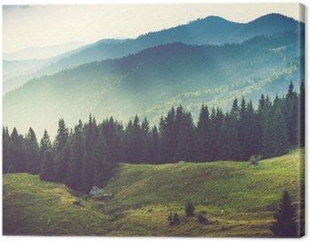 Piękny górski krajobraz lato
