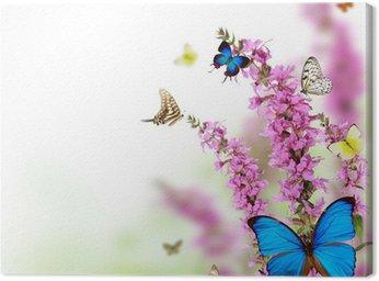 Obraz na Płótnie Piękny kwiat tła z egzotycznych motyli