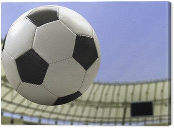 Obraz na Płótnie Piłka leci na stadionie