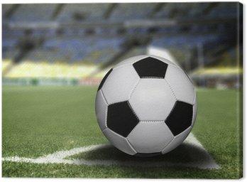 Obraz na Płótnie Piłka na polu