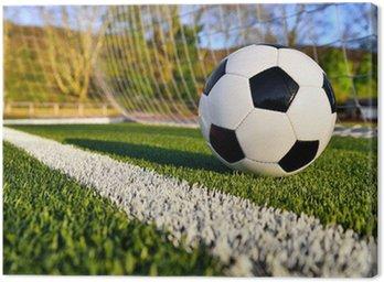 Obraz na Płótnie Piłka nożna jest za linią bramkową