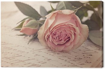 Obraz na Płótnie Pink Rose
