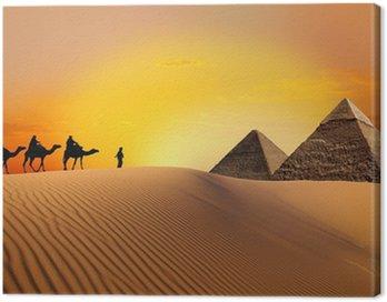 Obraz na Płótnie Piramidy, wielbłąd i zachód słońca