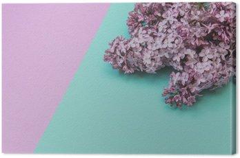 Obraz na Płótnie Płaski lay stylowy zestaw: Lilac kwiaty na pastelowym tle. Widok z góry.