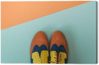 Płaski lay zestaw mody: kolorowe vintage buty na kolorowym tle. Widok z góry.