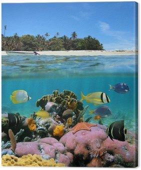 Obraz na Płótnie Plaża i rafa koralowa