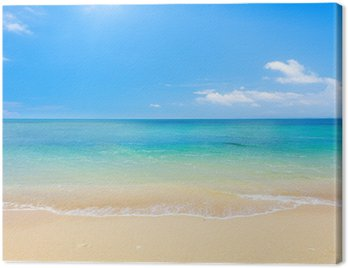 Plaża i tropikalnych morza