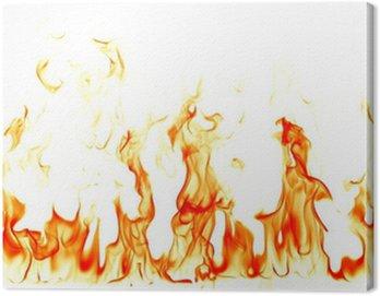 Obraz na Płótnie Płomienie ognia na białym tle