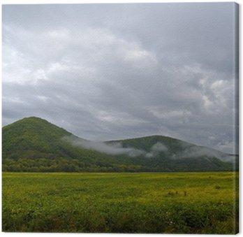 Obraz na Płótnie Pochmurny poranek na skraju pola soi