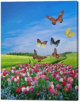Obraz na Płótnie Pola z kolorowych kwiatów i motyli grupa