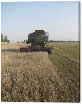 Obraz na Płótnie Połączyć cepów zbioru soi