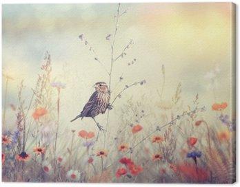 Obraz na Płótnie Pole z dzikich kwiatów i ptaków