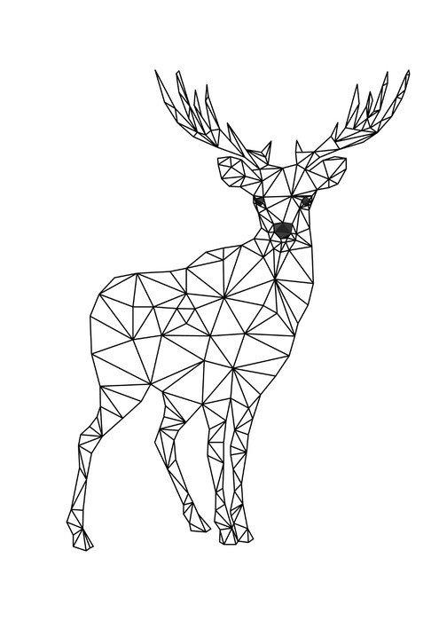 Obraz na Płótnie Poli niski charakter jelenia. Designs for Xmas. Christmas ilustracji w stylu sztuki linii. Pojedynczo na białym tle. - Zwierzęta