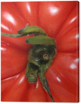 Obraz na Płótnie Pomidor