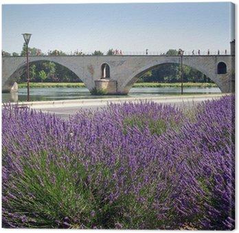 Obraz na Płótnie Pont d avignon