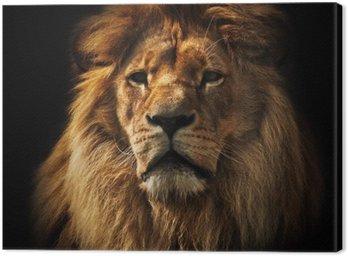 Obraz na Płótnie Portret Lion z bogatą grzywę na czarno
